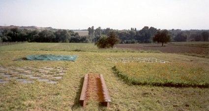 2002 new landscapes