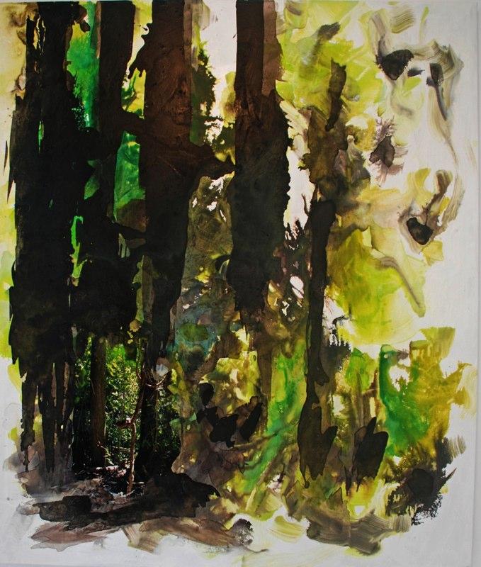 Regenwalddetail31_2020