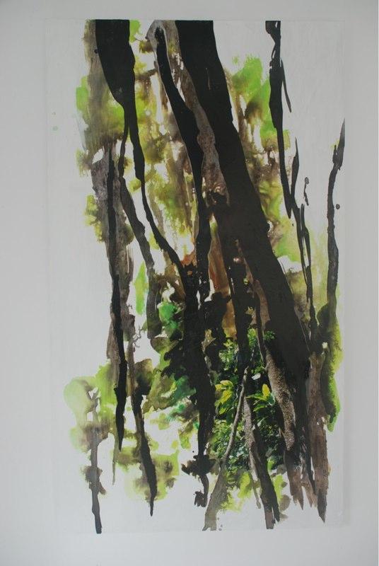 Regenwalddetail32_2020