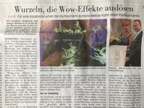 Zeitungsartikel 9. Höhler Biennale 2019