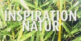 Einladung Inspiration Natur